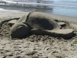 The Sand Turtle by Joava