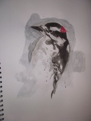 greater spotted woodpecker by teaareohwhy