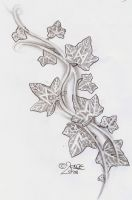 Ivy climbs runes Tattoo Design by 2Face-Tattoo