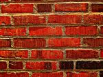 Brick Wall 2 by my-dog-corky