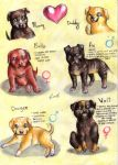 A litter of Asdrubale's puppies 3 by FuriarossaAndMimma