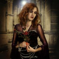 The Rose's Power by vampirekingdom