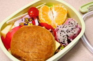 An American Bento by Demi-Plum
