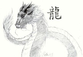 Chinese Dragon by H3llzAng3l