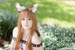 Horo Spice and Wolf 03 by thirdstop