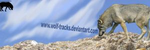 Wolf-Tracks Signiture Image by Wolf-Tracks
