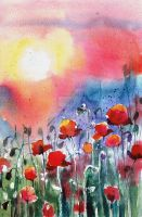 Poppies Field by bemain