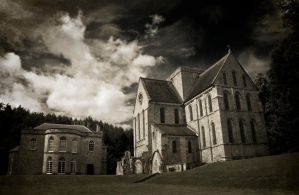 Brinkburn Priory mono by newcastlemale