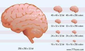Brain Icon by medical-icon-set