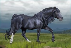Green Frost Ranch's Argento by SolinaBright