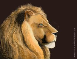 The lion 2 by Miracat