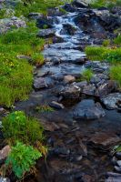 Creeks Everywhere - 02 by AndreasResch