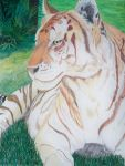 Golden Tiger by WindSong83
