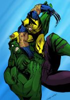THE HULK VS THE WOLVERINE by Sabrerine911