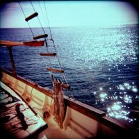 Holga - Sails by Lomomaniac