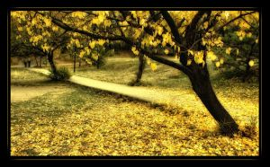'fall by intels
