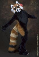 Red Panda Fursuit Costume by Beetlecat