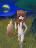 Horo the Wise Wolf by Luycaslima