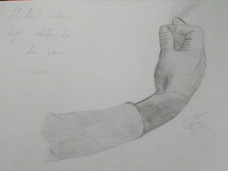 Hand Study Based On da Vinci's Sketch by IliGF12