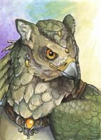 Greengryph - ACEO by windfalcon