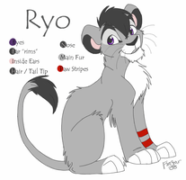 Ryo ref sheet 2008 by KaiserTiger