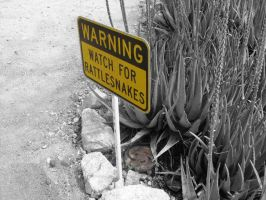 Watch for Rattlesnakes by Junthor