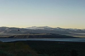 Mono Lake Late Afternoon II by Synaptica