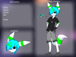 Hayner CoS reference sheet by snowflake95