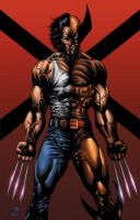 Dalhouse Wolverine by RudyVasquez