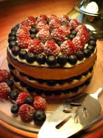 Mixed Berry Custard Genoise by Sliceofcake