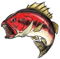 Redbass by Red8ball