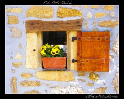 Cute Little Window by allym007