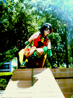 Perching Robin by laughingdaredevil