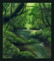 Forest, incomplete practice by sitar