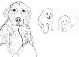 Rufus and Pups by SuirenShinju