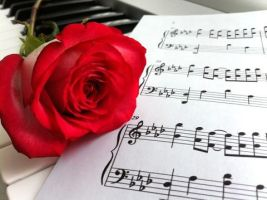 Piano Rose by Saesura