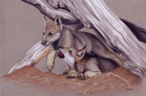 Wolf Cubs by Korrok