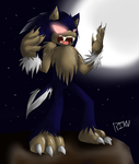 .:night of the werehog:. by RikuSonicShadow