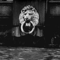 Thames Lion by lostknightkg