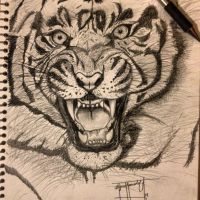 Tiger by Miklell