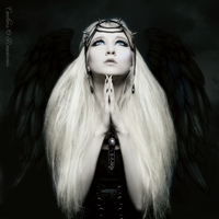 Angel of Darkness by ROSASINMAS