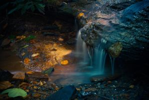 Lighted Stream by PhotoAlterations