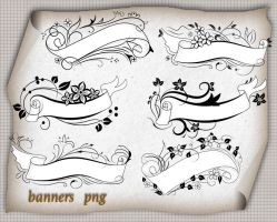 Banner Png by roula33