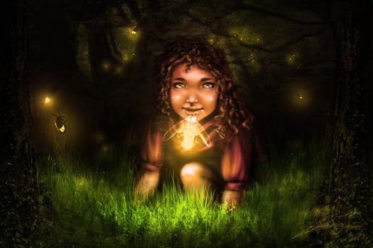 Fireflies by Bola5