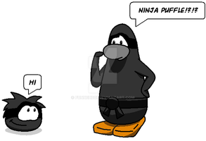 Ninja Penguin And Puffle by FunnehBoi