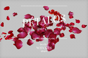 03 Petalos.png by 12WitchesStore