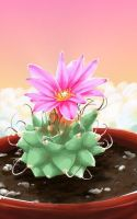 Cactus, a present for UAKimov09 by OneAngele