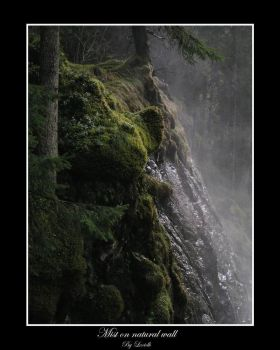 Mist on natural wall by lexidh