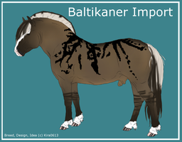 Baltikaner Import 003 by LiaLithiumTM