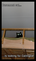 Quest of basement cat by griffsnuff